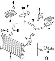 Manguera de Refrigerante del Radiador Original para Ford